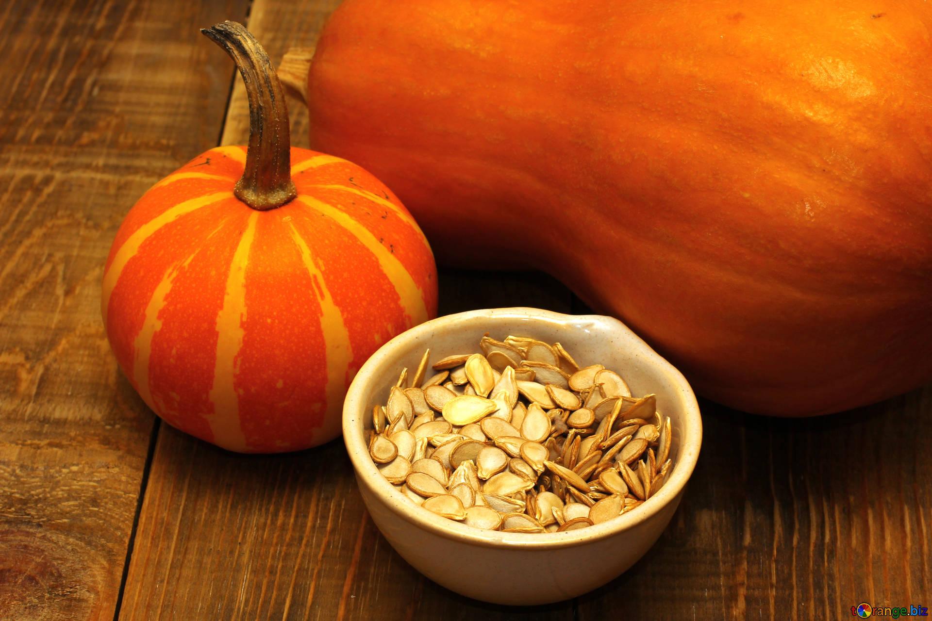 Free picture (Pumpkin Seeds) from https://torange.biz/pumpkin-seeds-35538