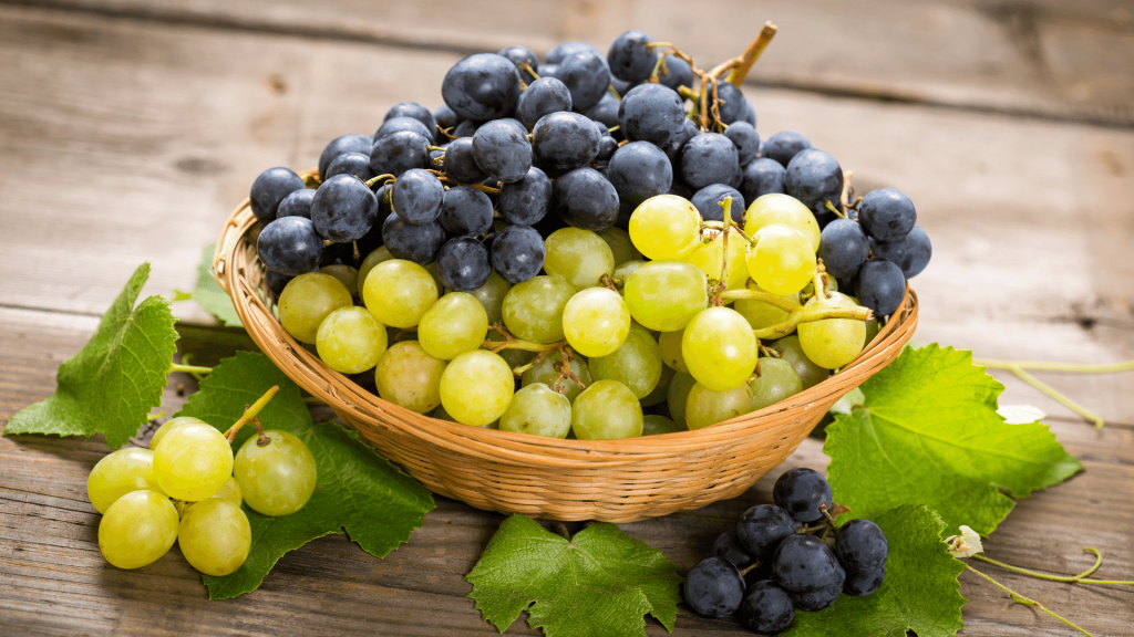 Grapes have an impressive number of health benefits, so let's see the 11 most amazing benefits of their consumption and their nutritional values.