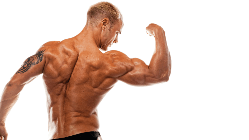 I thought I would show you a complete training program, consisting of the 8 best home bicep exercises that will blast your biceps, which you can do at home, without expensive and bulky equipment.